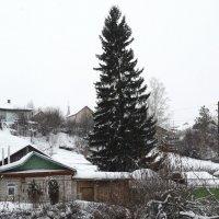 На сколне :: Александр Подгорный