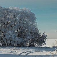 Зимний день :: Виктор Четошников
