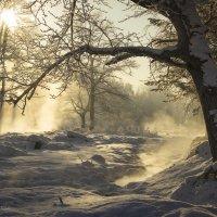 зимняя сказка :: василиса косовская