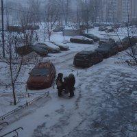 """""""Вы слышали? - Большой снег идет!"""" :: Андрей Лукьянов"""