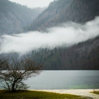 Королевское озеро :: Tatiana Willemstein