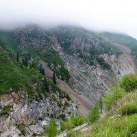 Nature Life. Окрестности Алматы. :: Murat Bukaev
