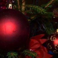 Яркие шары. :: zoja