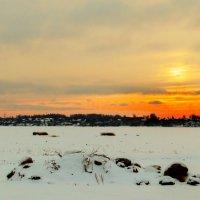 закат в зимний день :: Nadia Brusnikova