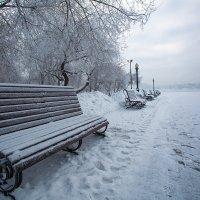 Припорошило :: Андрей Шаронов