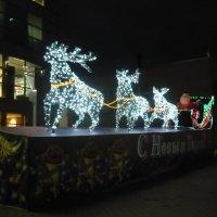Вот и Дед Мороз домчался! :: Вера Щукина