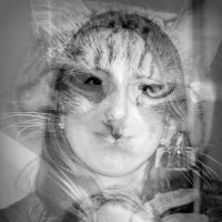 женщина-кошка :: Инна