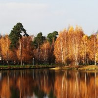 Осень :: Diana Razgulova