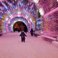 новогодние огни :: Инга Твердова (Вашкунайте)
