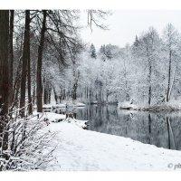 первый снег :: Вера Ульянова