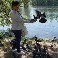 Летите, голуби, летите... :: Ирина Шурлапова