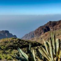 Spain 2015 Canary Tenerife-Masca 2 :: Arturs Ancans