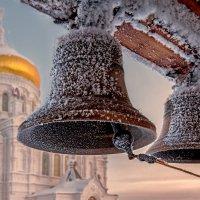 Морозное молчание :: Владимир Чуприков