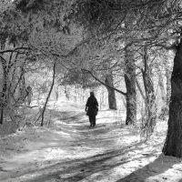 Прогулка в парке :: Мария Кондрашова