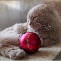 Отшумели праздники...можно и расслабиться....(2) :: Людмила Богданова (Скачко)