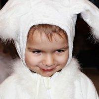 Хитрый заяц :: Alexander N