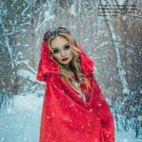 Красная шапочка :: Екатерина Бурдыга