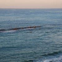 один в море воин ! :: ALEX KHAZAN