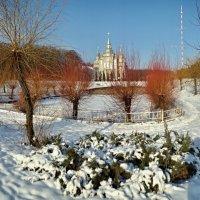 солнечный зимний день :: юрий иванов