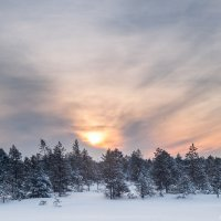 Январское утро :: Яна Старковская