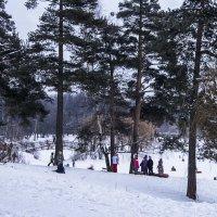 Зимние забавы :: Яков Реймер