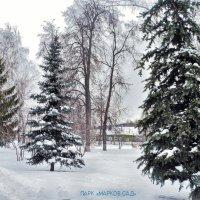 парк Марков сад :: Людмила Н
