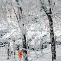 Зима в Питере :: Юля Тихонова