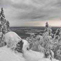Снежная зима :: vladimir