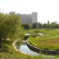 Жилой комплекс возле парка :: Диана Одинцова