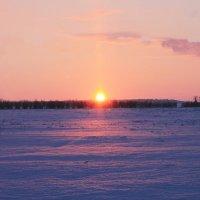 Зимний рассвет :: Алиме Исмаилова