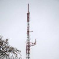 tower :: Сергей Зорин