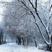 Зима. :: Валентина ツ ღ✿ღ