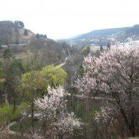 Начало весны :: Маруся