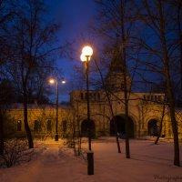 Музей-заповедник Измайлово зимней ночью :: Виктор М
