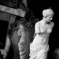 Венера :: annet Sagitova