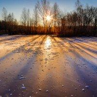Зимний восход :: Дмитрий Гольнев