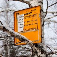 Расписание :: Радмир Арсеньев