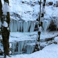 Ледовые стены :: Светлана Попова