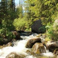 Горная река :: Лариса