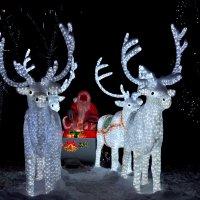 Дед мороз :: Alex Bush