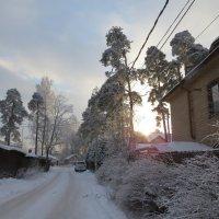 Улица в Шувалово :: Вера Щукина