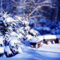 зима :: мирон щудло