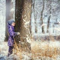 Зимняя сказка :: татьяна иванова