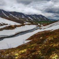 Лето в Хибинах :: Альберт Беляев