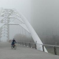 Мост через р. Хамбер, Этобико, Канада :: Юрий Поляков
