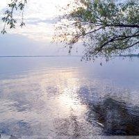 Чуден Днепр при тихой погоде... :: Тамара