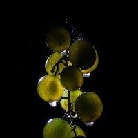 Виноград... :: Sergey Apinis