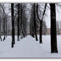 Александро-Невская Лавра :: tipchik