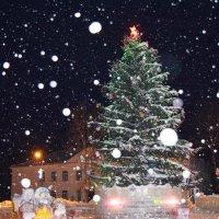 Новый Год без елки-не Новый Год! :: Полина Борщик