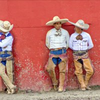 Соревнование по чареррии, Мексика :: Elena Spezia